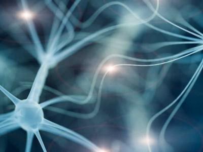 هک کردن مغز؛ راهی به سوی موفقیت در سطوح بالا